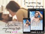 Excerpt Reveal: The Sweet Talker by Gina Azzi