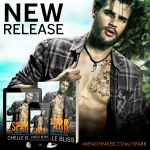 Release Blitz: Spark by Chelle Bliss