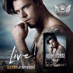 Release Blitz: Boomer's Rise by K.L. Savage