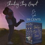 Sale Blitz: Shooting Stars Series by Aurora RoseReynolds