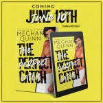 THE PERFECT CATCH BY MEGHAN QUINN COVERREVEAL!!