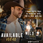 Release Blitz: Wild Ride by Kim Loraine