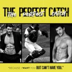 Release Blitz: The Perfect Catch by MeghanQuinn