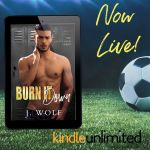 Release Blitz: Burn it Down by JuliaWolf